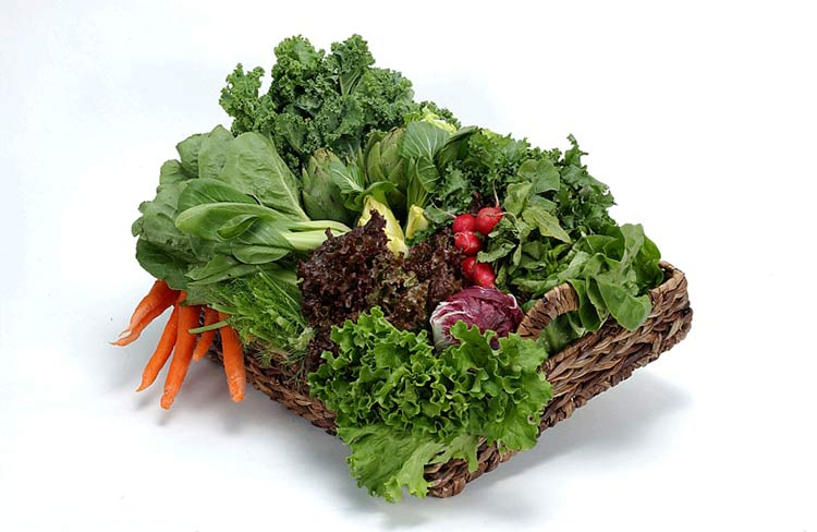 Темно-зеленые листовые овощи - прекрасный источник клетчатки