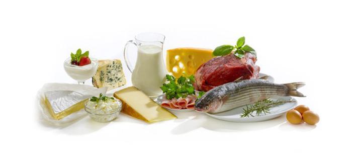 Раздельное питание: белковый день