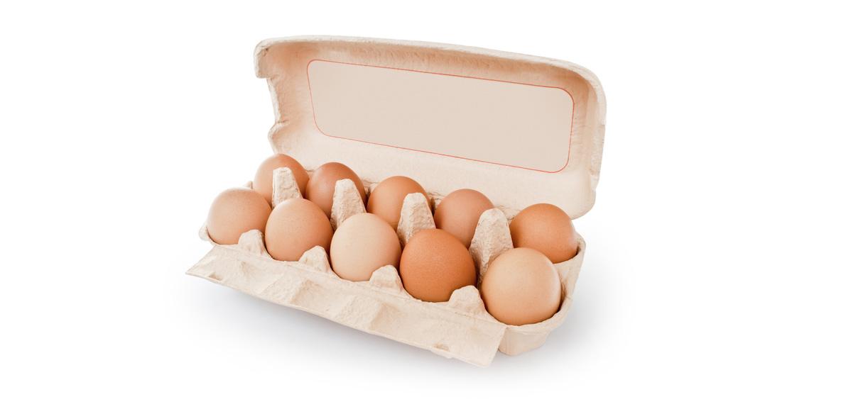 Польза куриных яиц