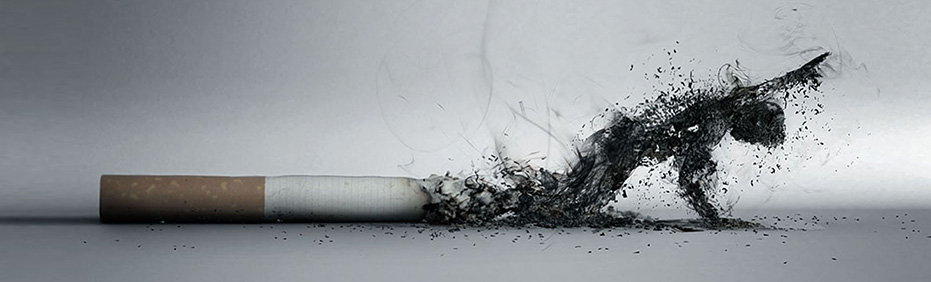 Зависимость от сигарет и пути борьбы с этой пагубной привычкой