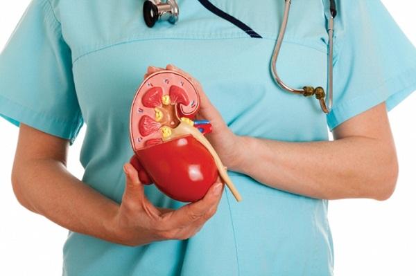 Перинефрит, как правило, возникает в результате поражения воспалительным процессом паренхимы почки