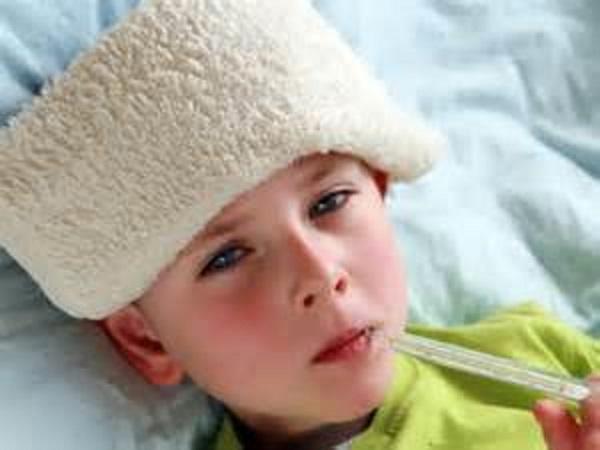 Возбудителями простудных заболеваний являются риновирусы