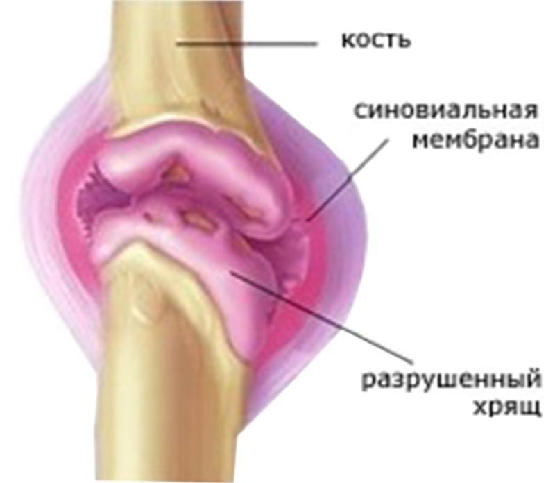 Городская поликлиника в тимашевске