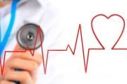 Как улучшить кровообращение: 5 шагов к чистым сосудам и сильному сердцу