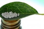 Роль и место гомеопатии в современной врачебной практике