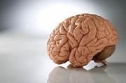 Нарушения речи при опухолях мозжечка