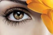 6 Марта — Всемирный день борьбы с глаукомой