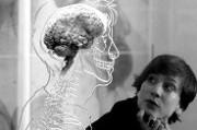 Старение и нейрогуморальная регуляция
