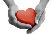 Заболевания сердца и сосудов - важная проблема современности