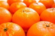 Новый Год для кормящих мам: аллергия на мандарины
