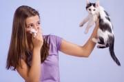 Борьба с аллергенами