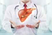 Ангиосаркома печени: как правильно диагностировать