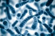 Классификация хромосомных болезней