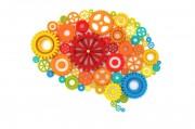 10 советов, как повысить интеллект, или «держим мозги в тонусе»