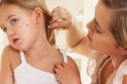Профилактика и организация борьбы с дерматомикозам