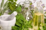 Общие принципы применения фитотерапии и характерис