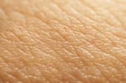 Несколько фактов о нашей коже