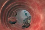 Современное состояние вопроса о лечении тромбофлебита нижних конечностей, значение антикоагулянтной терапии
