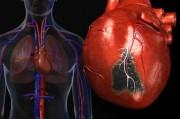 Новые стратегии лечения пациентов с острым коронарным синдромом