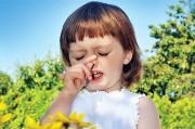 Поллиноз: как бороться с аллергией на пыльцу
