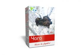 Чай «Чага с витамином С Вертекс»