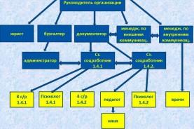 """Структура общественной организации """"Солнечный круг"""""""