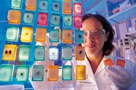 Лаборант первой осматривает образцы ткани невооруженным глазом. Образцы опухоли затем пройдут дополнительные аналитические тесты