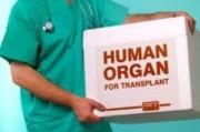 В Австралии будут официально платить за донорские органы