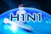 Свиной грипп уже и в Ялте или