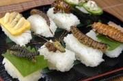 По мнению ООН меню из насекомых спасет мир от пищевого кризиса