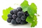 Виноградная диета спасет от метаболического синдрома