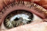 Слепота отступает перед генетически заряженными вирусами