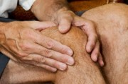 Эффективное лекарство против артрита помогут получать верблюды и ламы!