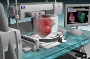 Получены первые принты стволовых клеток! Что будем распечатывать дальше?