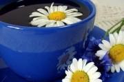 Ромашковый чай как защита против рака
