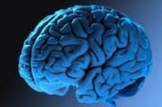 Особенности человеческого мозга выявит глобальный проект «U-Change»