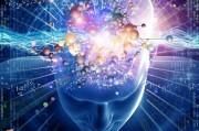 Найден участок мозга, повинный в депрессии