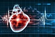 JBS3 calculator предупредит о сердечном приступе и инсульте