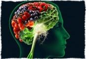 Диета для молодости мозга
