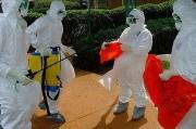 Эбола пожаловала в Штаты