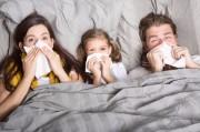 В Украину идут три опасных вируса гриппа