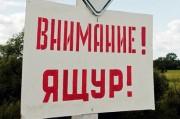 Опасаясь эпидемии ящура в России закрывают известные туристические маршруты