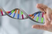 Ученые объявили о старте генетических испытаний на раковых больных