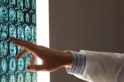 Ученые научились «вычислять» профессиональные склонности