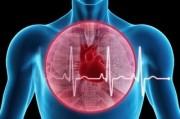Миниатюрный имплантат поддержит работу сердца