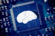 МРТ помогло раскрыть тайну рождения новых воспоминаний