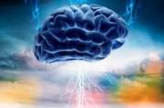 Расстройства поведения возможно будут повержены за счет электростимуляции мозга