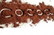 Исследователи предлагают употреблять какао во избежание воспалительных процессов и не только