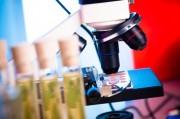 Онкологи заявили о готовности исключить летальность рака крови
