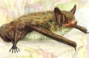 Раскрыв секреты летучих мышей, ученые планируют подарить людям долголетие и не только